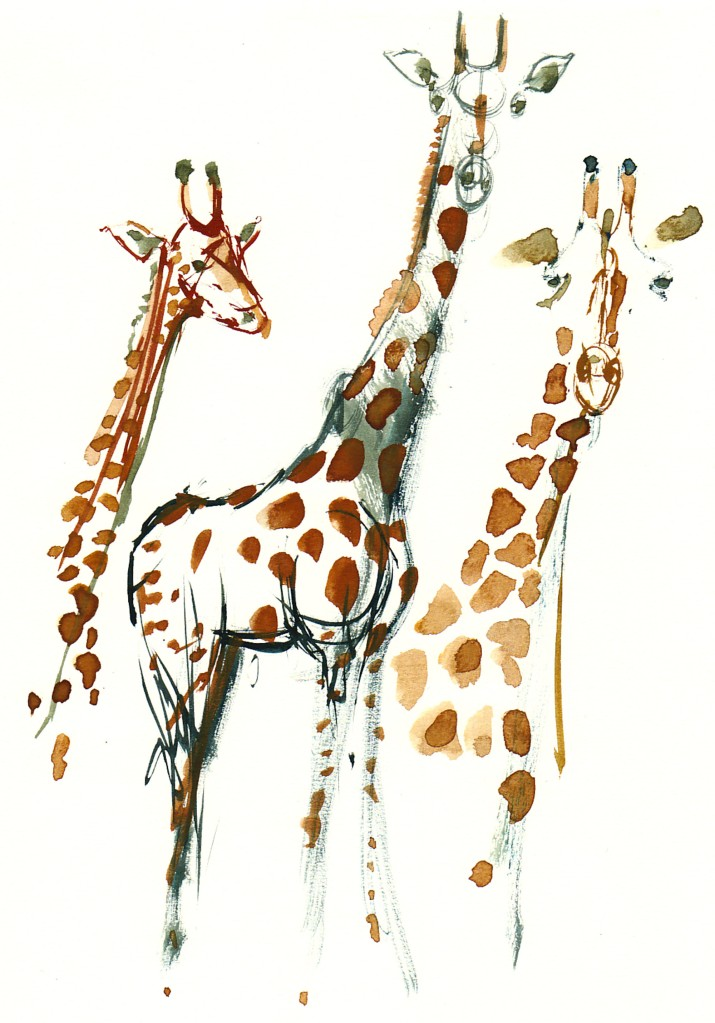 giraffes Watercolour by Frits Ahlefeldt
