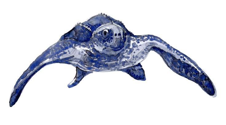 Front view leatherback Sea turtle watercolor