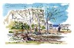 watercolor painting of the vegetable gardens on Christiansoe, Ertholmene. Denmark. Painting by Frits Ahlefeldt