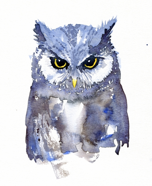 Owl with yellow eyes watercolor by Frits Ahlefeldt