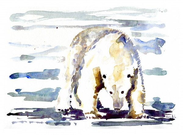 front view Polar bear watercolor by Frits Ahlefeldt