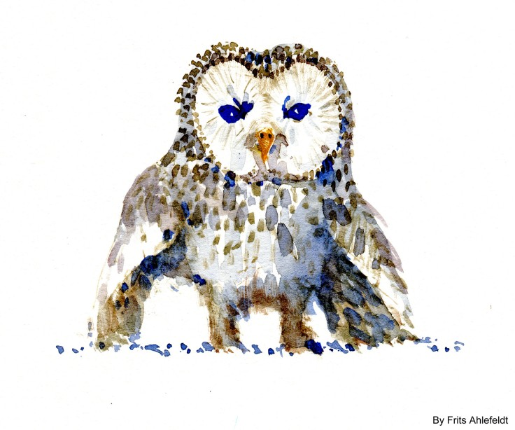 owl Watercolour by Frits Ahlefeldt