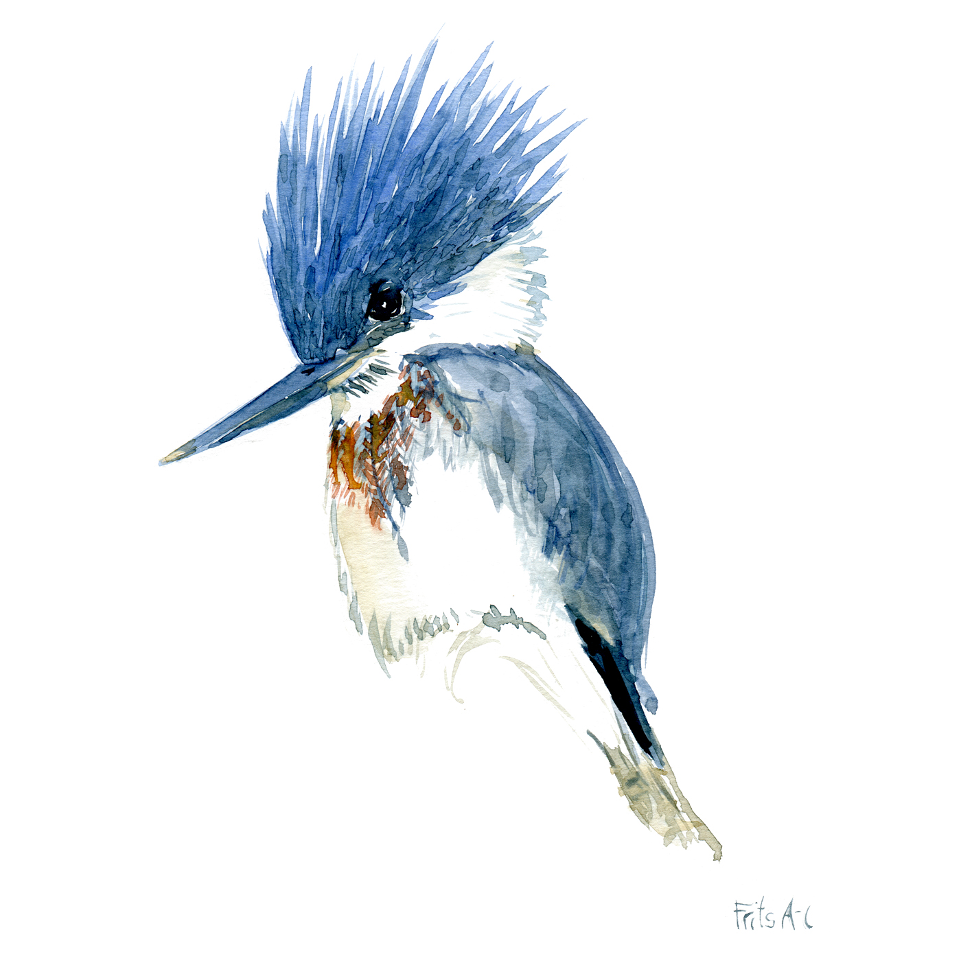 Watercolour by Frits Ahlefeldt