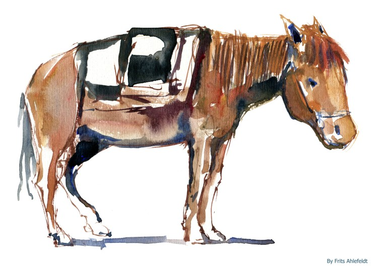 horse Watercolour by Frits Ahlefeldt