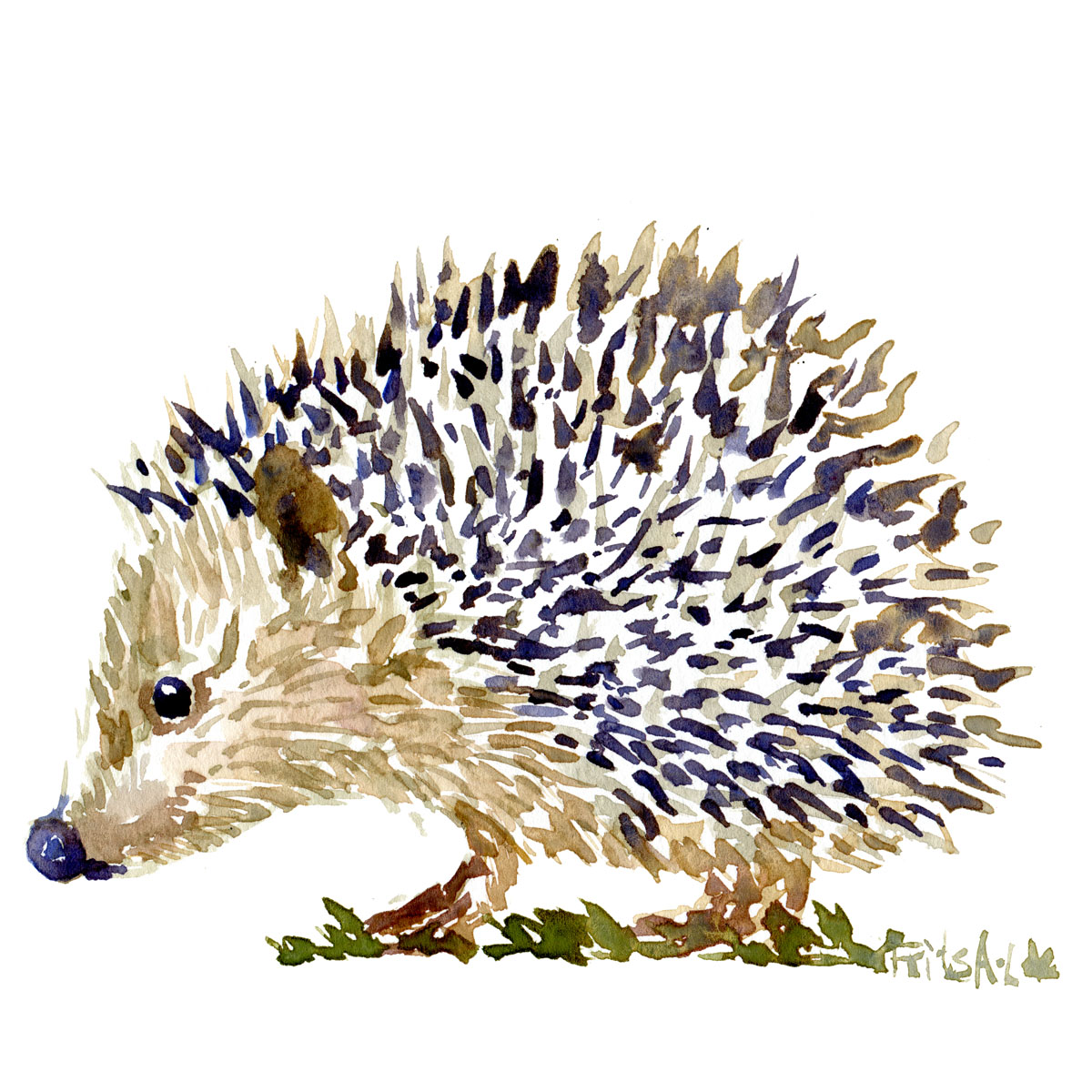 Hedgehog watercolor-by-frits-ahlefeldt