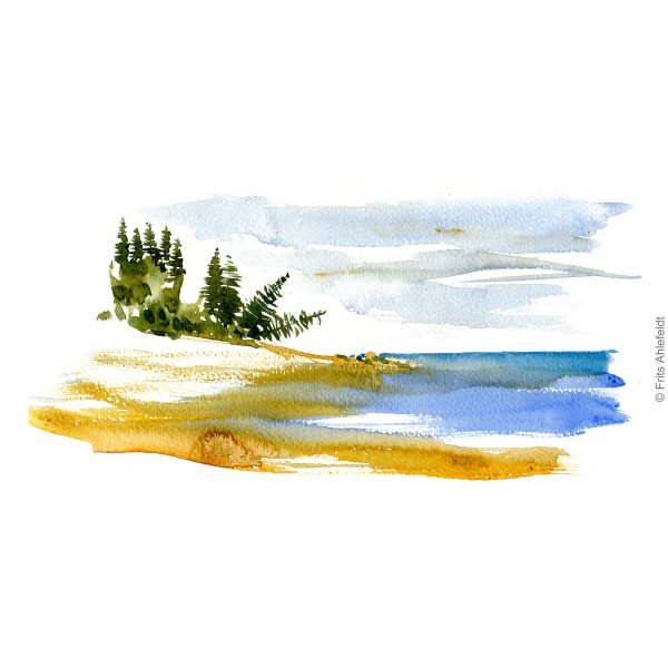 Coast with fallen trees on Bornholm Coast path. Bornholm coast trail hiking watercolor painting by Frits Ahlefeldt