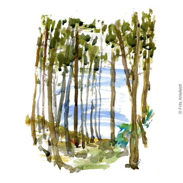 View between trees to the Baltic Sea. Bornholm watercolor painting by Frits Ahlefeldt